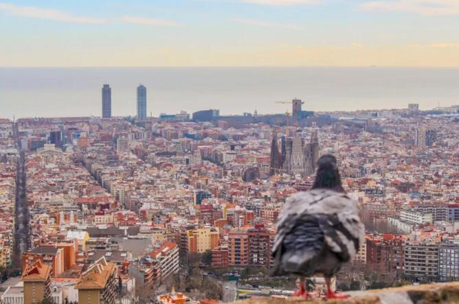 巴塞罗那艺术之城旅游